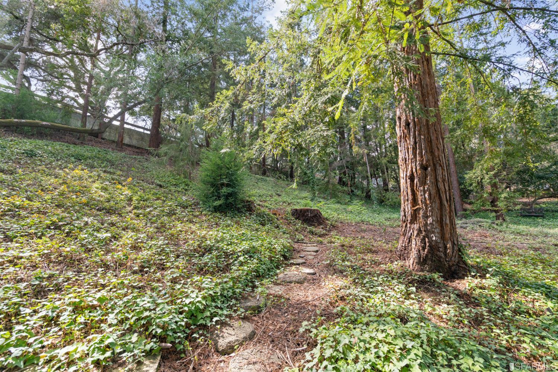 Listing 421535457 : 60  Camino Encinas , Orinda, CA, 94563  (photo 37)
