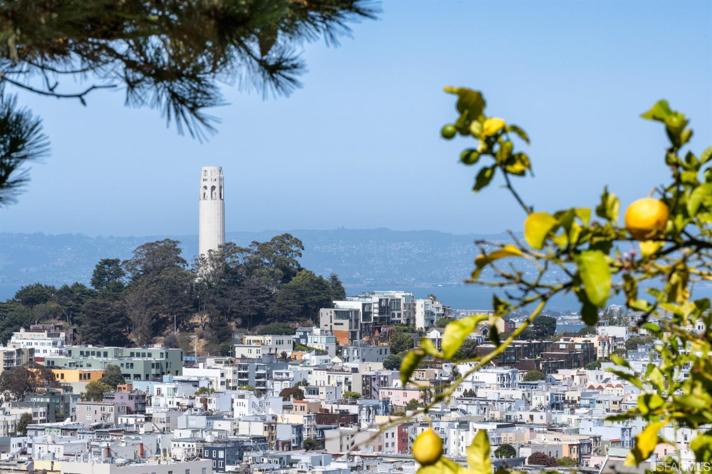Listing 421596903 : 1266  Washington Street, San Francisco, CA, 94108  (photo 41)
